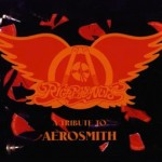 SS-018 :: VARIOUS ARTISTS - Right in the Nuts (A Tribute to Aerosmith)